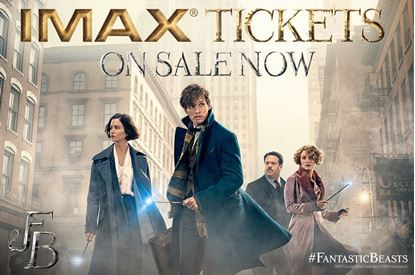 Picture of Fantastic Beasts and Where to Find Them 3D
