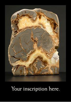 Picture of Ammonite