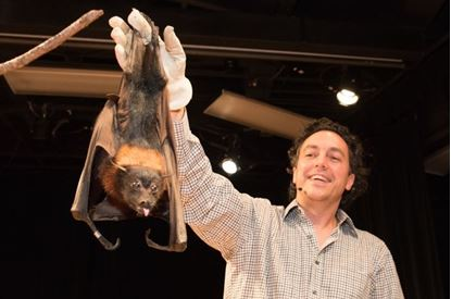 Picture of Live Bats! Adults Only 8 p.m.