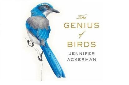 Picture of The Genius of Birds