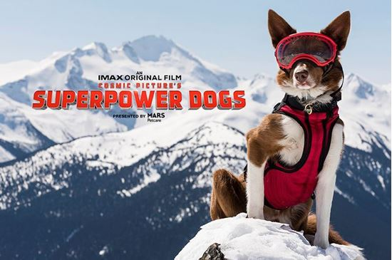 Picture of Superpower Dogs 3D (Requires Museum Admission)