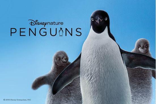 Picture of Penguins (Requires Museum Admission)