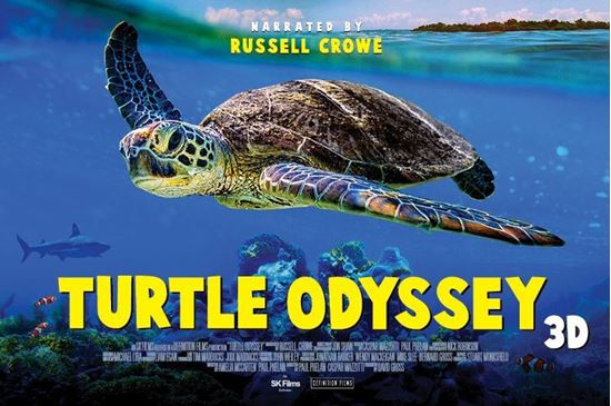 Picture of Turtle Odyssey 3D (Requires Museum Admission)