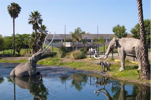 Picture of The Past and Future of the La Brea Tar Pits