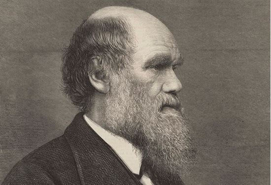 Picture of Meet Charles Darwin 8 p.m.