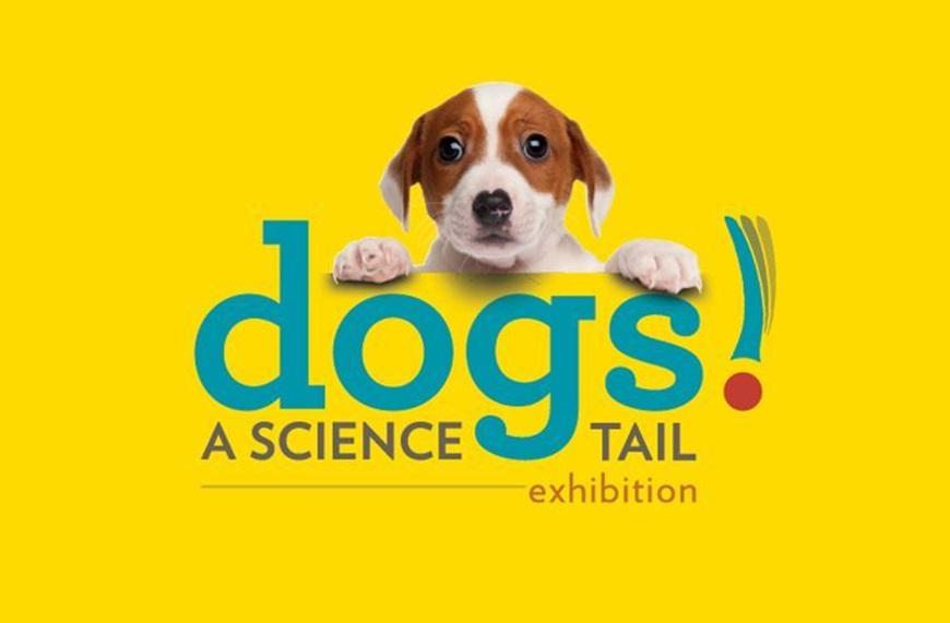 Picture of Dogs! A Science Tail (Requires a timed ticket AND Museum Admission)