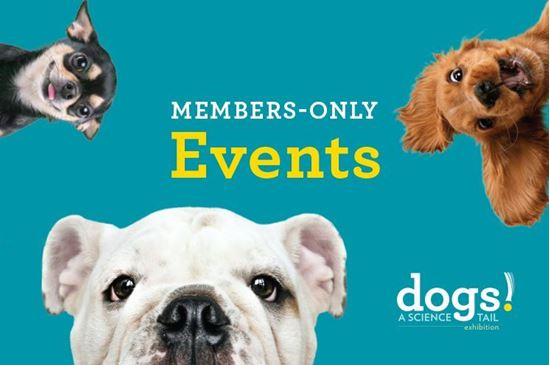 Picture of Members-Only Evening - Dogs! A Science Tail