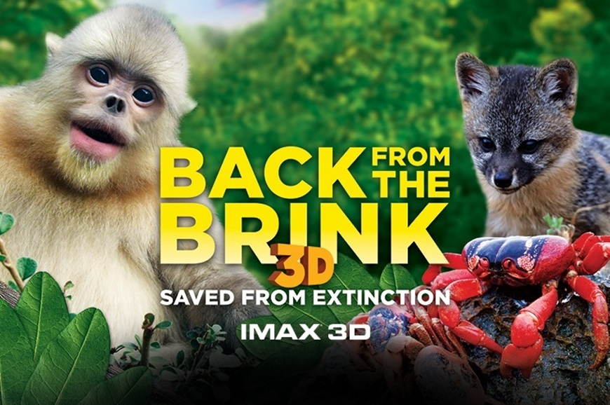 Picture of Back from the Brink 3D (Requires Museum Admission)