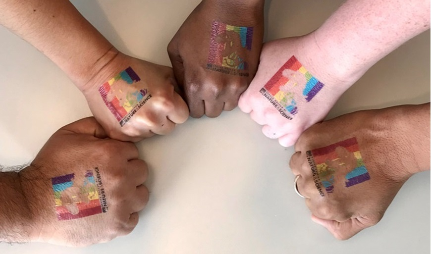 Picture of Denver PrideFest Family Hub