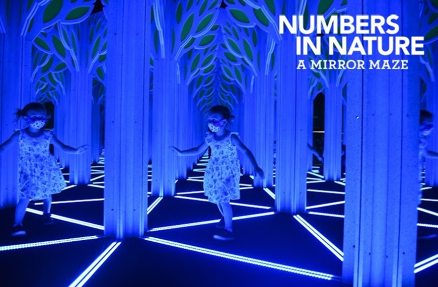 Picture of Numbers in Nature: A Mirror Maze (Requires a timed ticket AND Museum Admission)